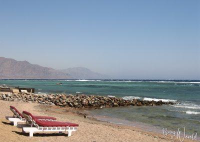 15 september 2007 - Life's a Beach