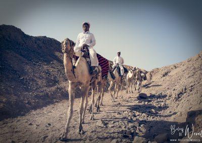 3 oktober 2009 - Trip to Ras Abu Galum